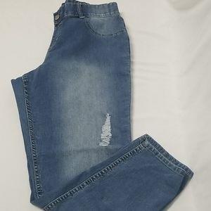 Lane Bryant Distressed Straight Leg Jeans